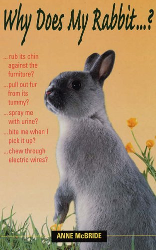 Why does my rabbit...? Anne McBride