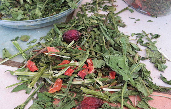 living world salad ingredient alfalfa, rose hip, carrot, dandelion