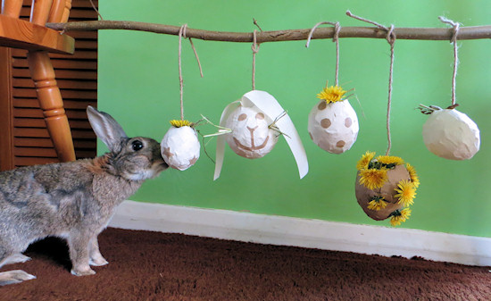 Toys For Bunnies : Homemade pinata rabbit toy the house