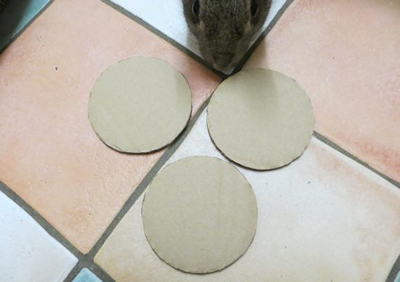 cardboard circles