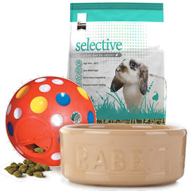 Rabbit Food Bowl/Food Storage