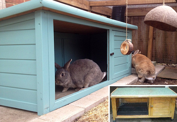 Providing Your Rabbit With A Shelter Or Hideaway