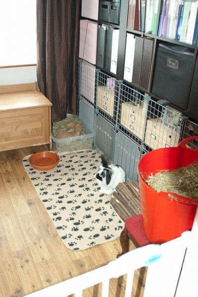 how to create a room in rabbit