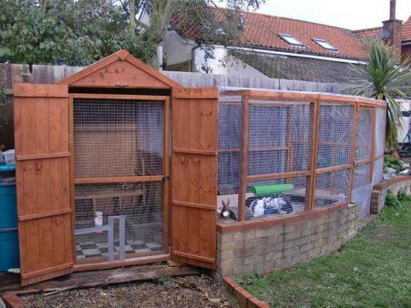 lovely bunny shed with attached aviary check out the