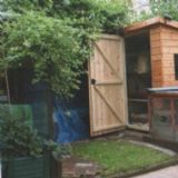 Shed & Warren Rabbit Run