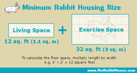 minimum cage size for two rabbits is 12 square feet