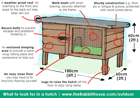 points to look for in a good rabbit hutch