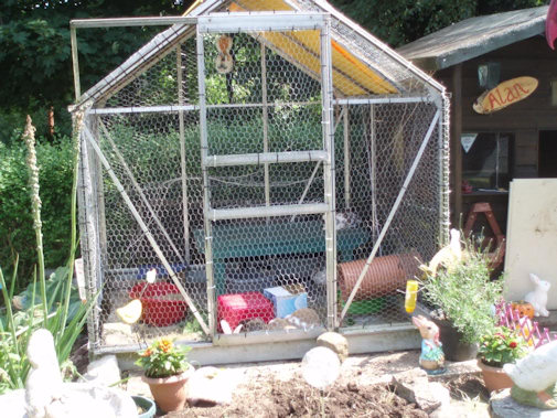 greenhouse rabbit run