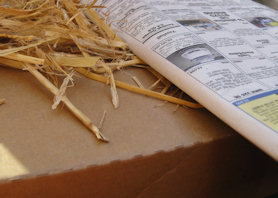 cardboard box, newspaper and hay - good for insulating