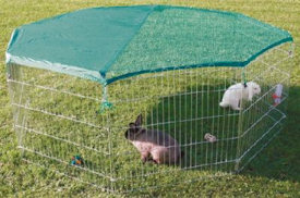 wire play pen