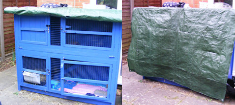 Diy Rabbit Hutch Insulation