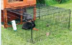 Rabbit Enclosure with Top (Black)